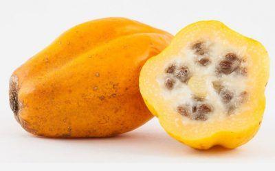 Papaya chilena, la súper fruta que ayuda a tu digestión