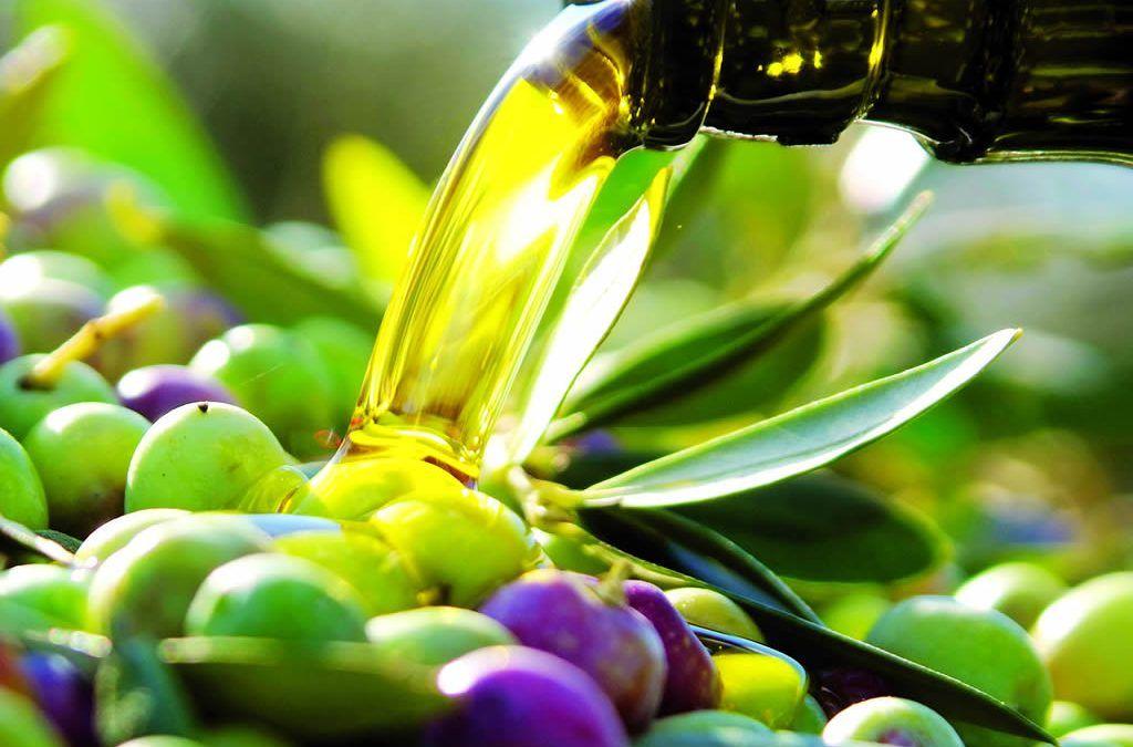 no todos los aceite de oliva son iguales