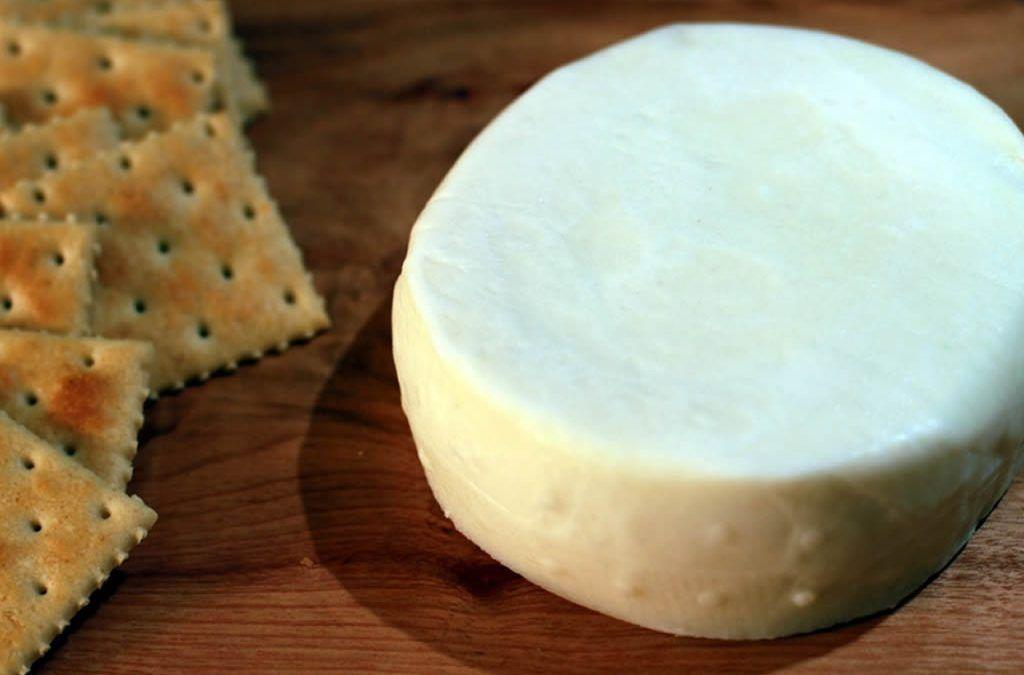 9 Razones para consumir quesos de cabra