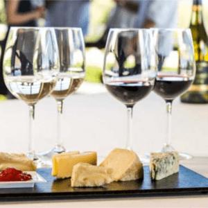 quesos y vinos frescos