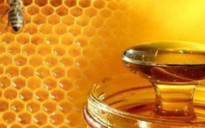 9 propiedades y beneficios de la miel de la abeja
